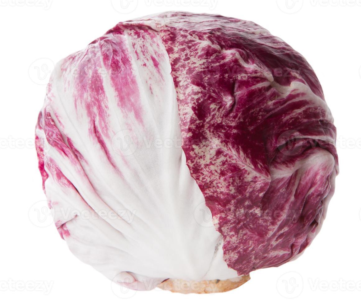 red cabbage radicchio isolated on white photo