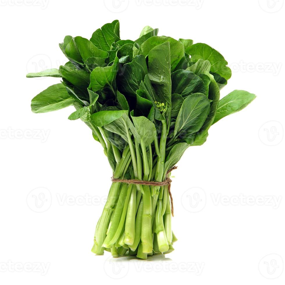 Green kale photo