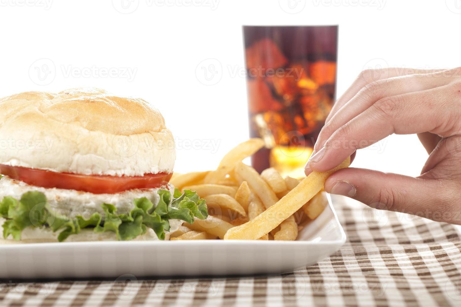 hamburguesa de pollo en estudio foto