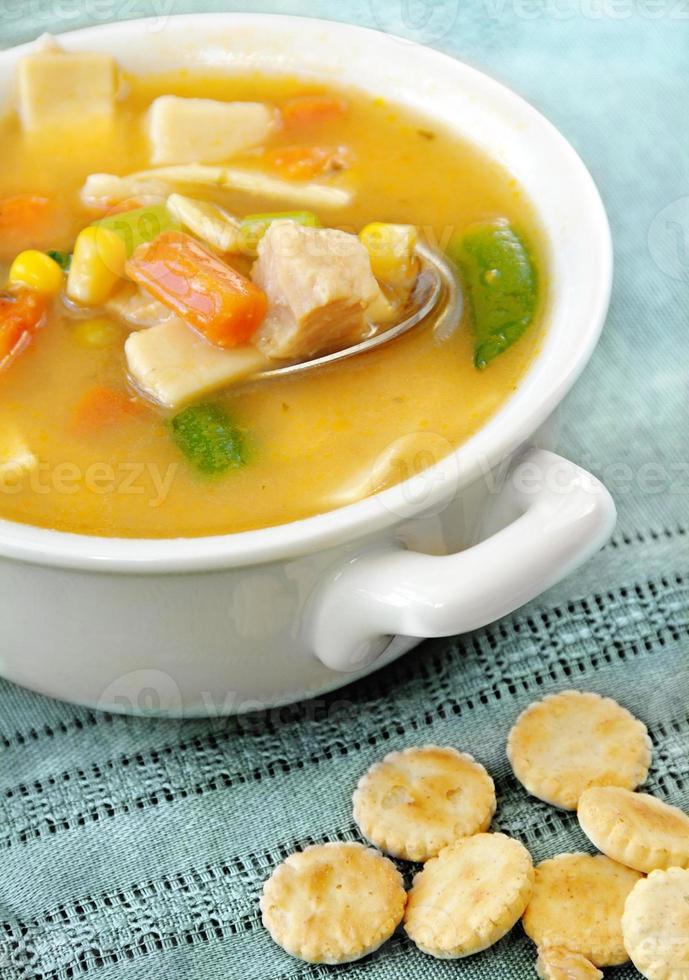 Sopa de Pollo con Verduras foto