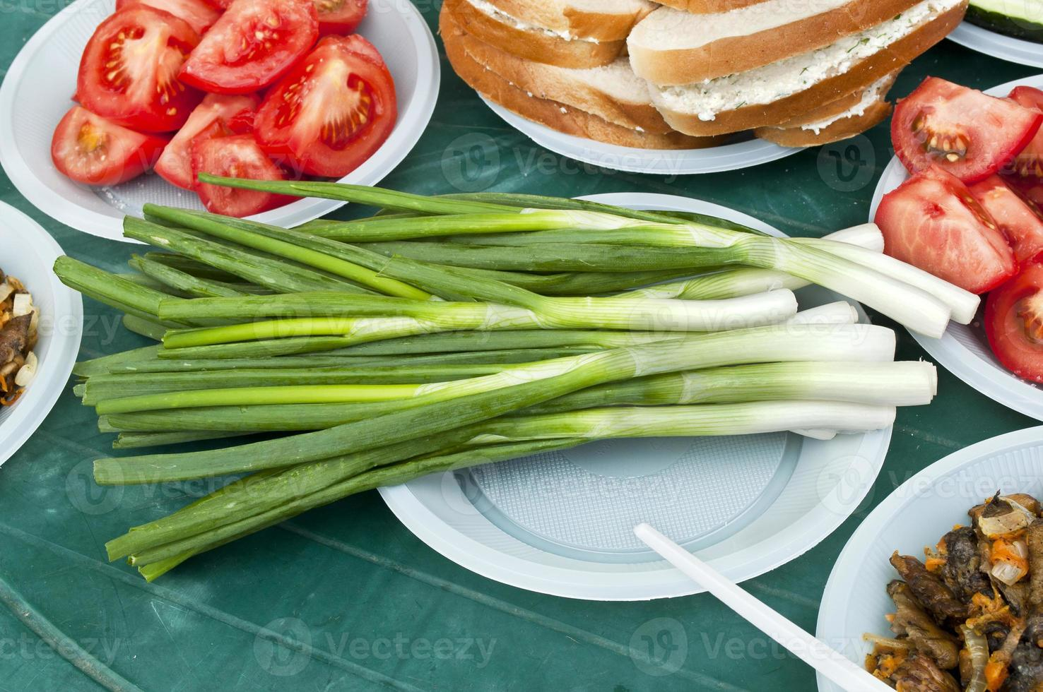 green onions on the table photo