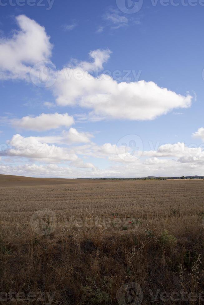 Spanish countryside photo