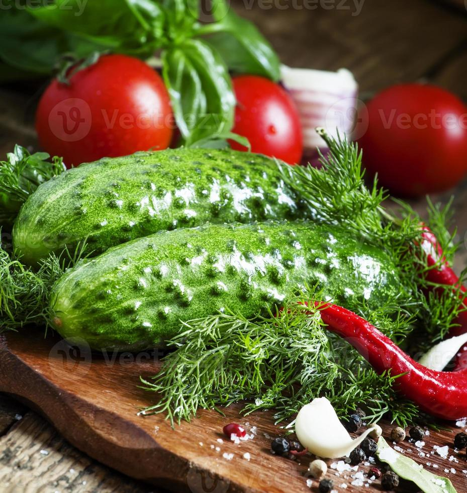 Cucumbers and tomatoes with spices and herbs, selective focus photo