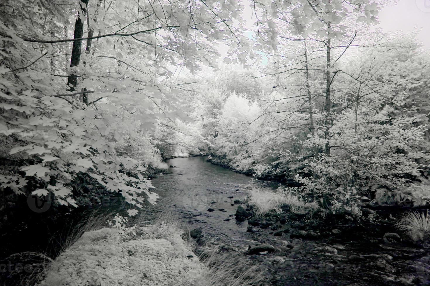 río lento foto