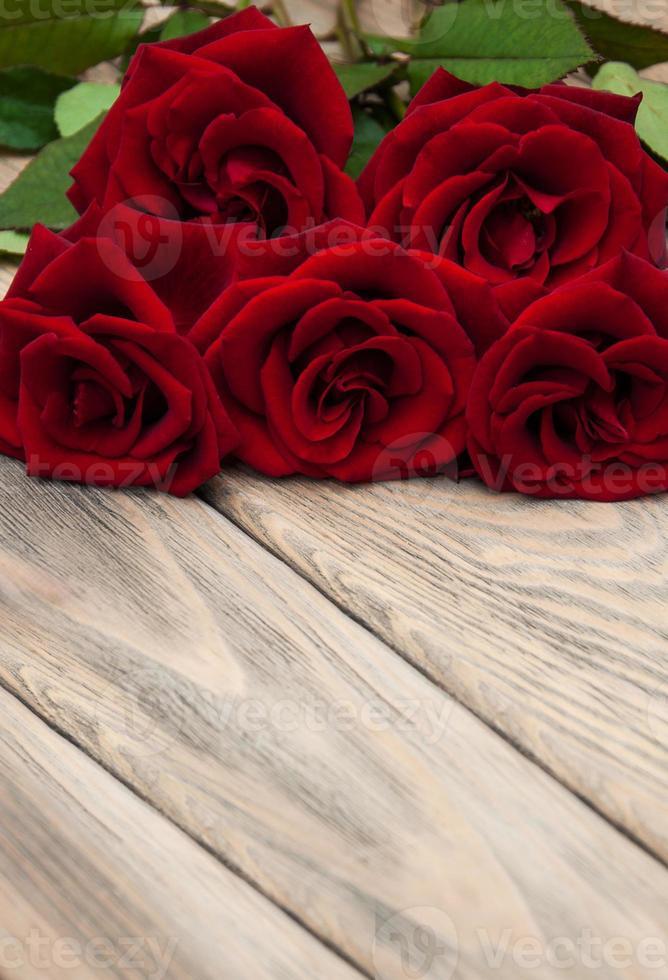 rosas rojas frescas foto