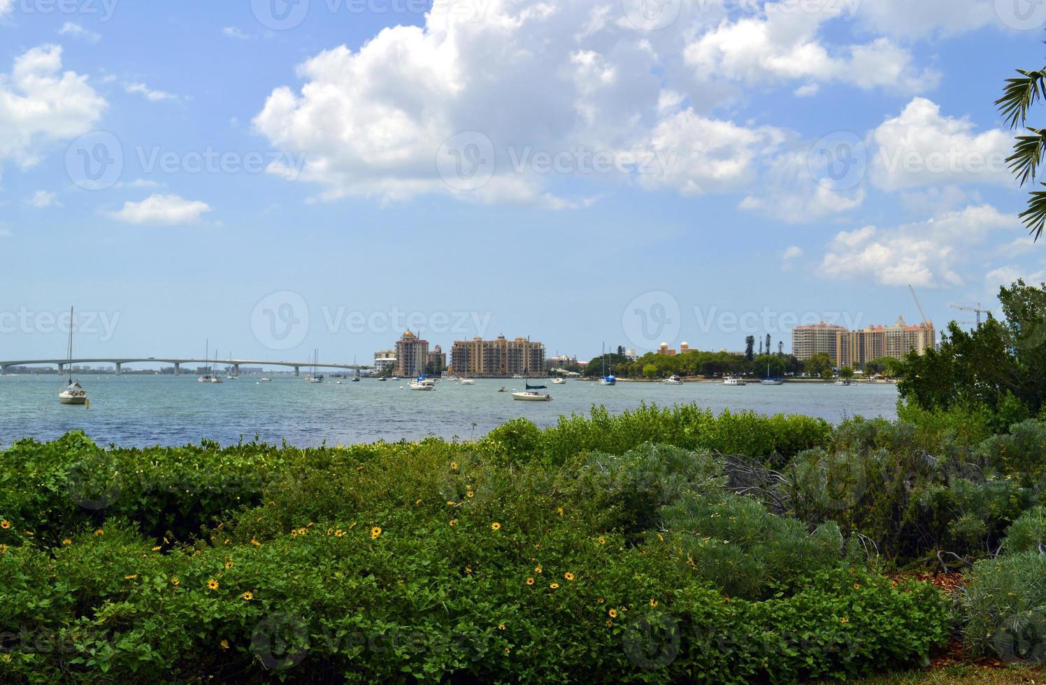 Sarasota Bay in Florida photo