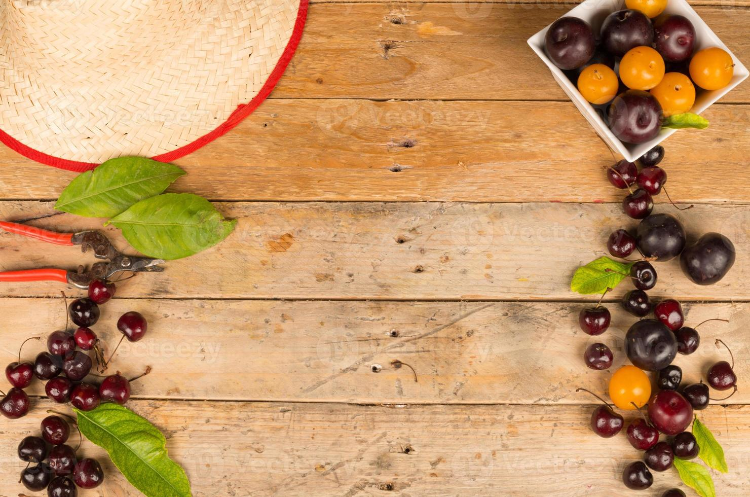 Summer produce photo