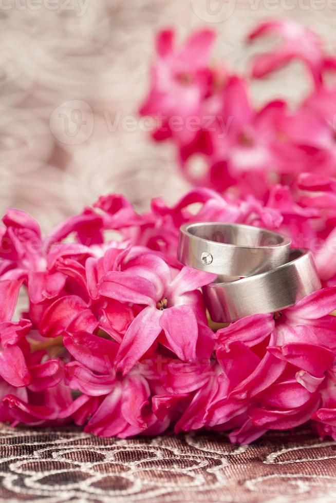 anneaux de mariage sur jacinthe rouge photo