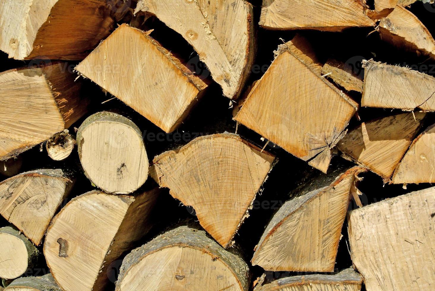 fuel-wood photo
