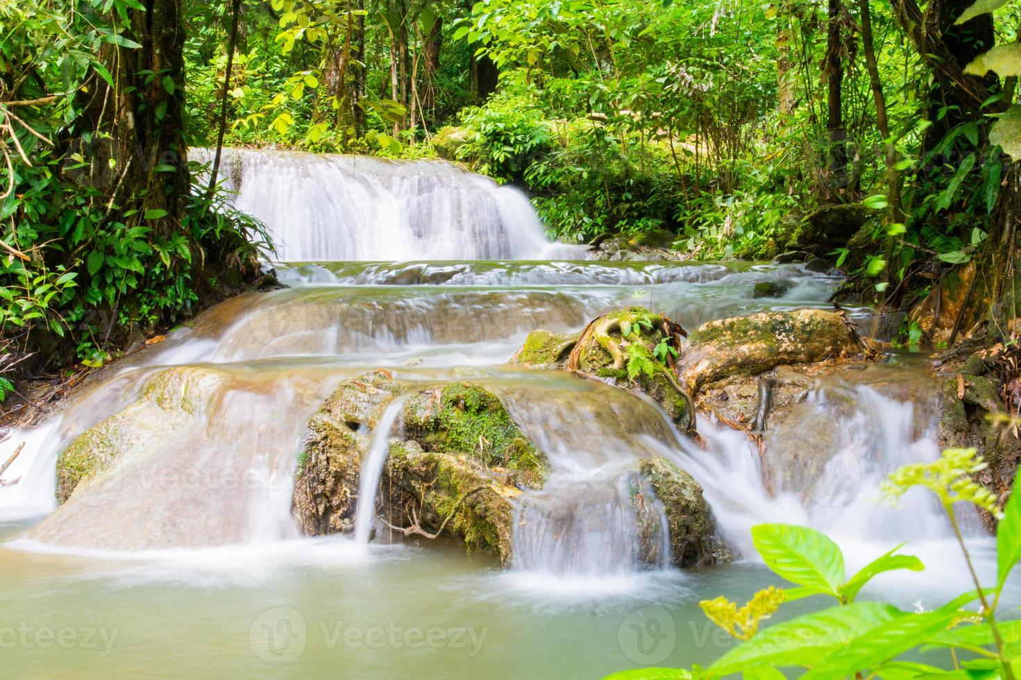 beautiful waterfall in forest photo