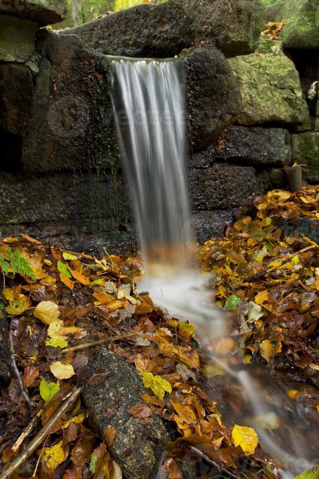 Wasser und Herbstlaub photo