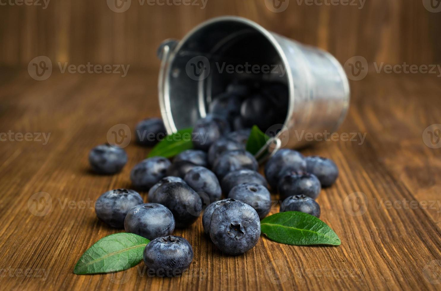 blueberries in small bucket photo