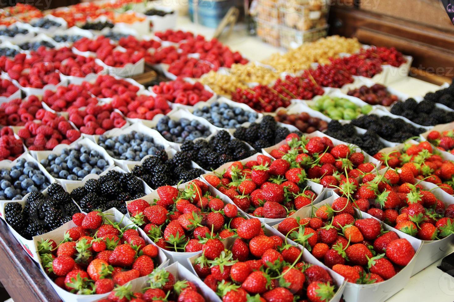 Tasty Project - Berries field photo