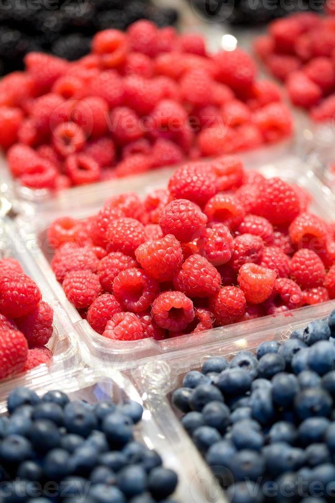 Berry Fruit photo