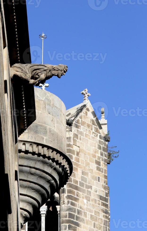 Gargoyles, Cathedral of the Holy Cross, Gotic Barri, Barcelona, Spin photo