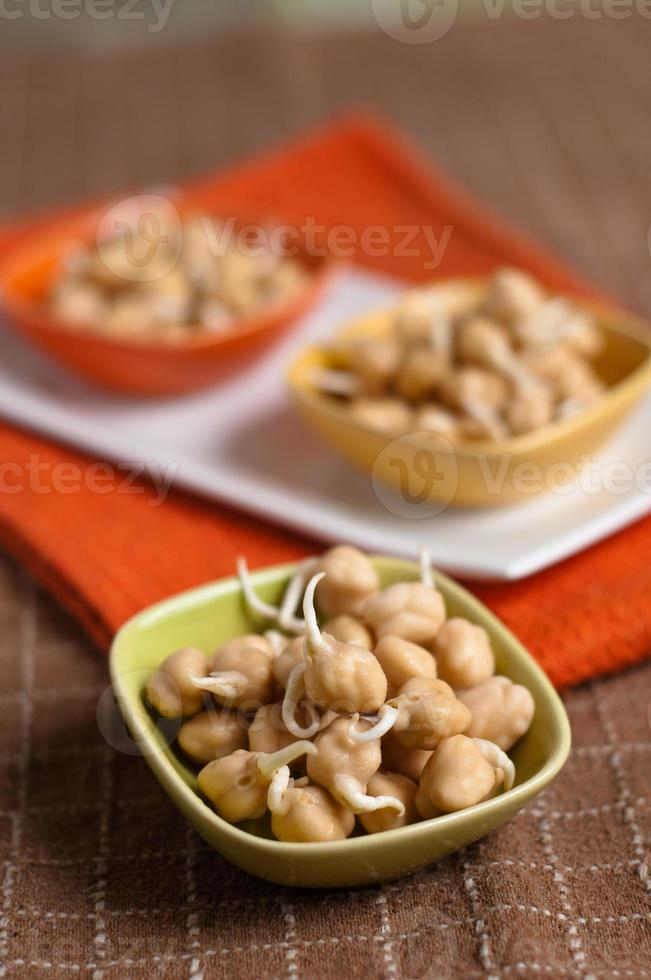 chickpea sprouts photo