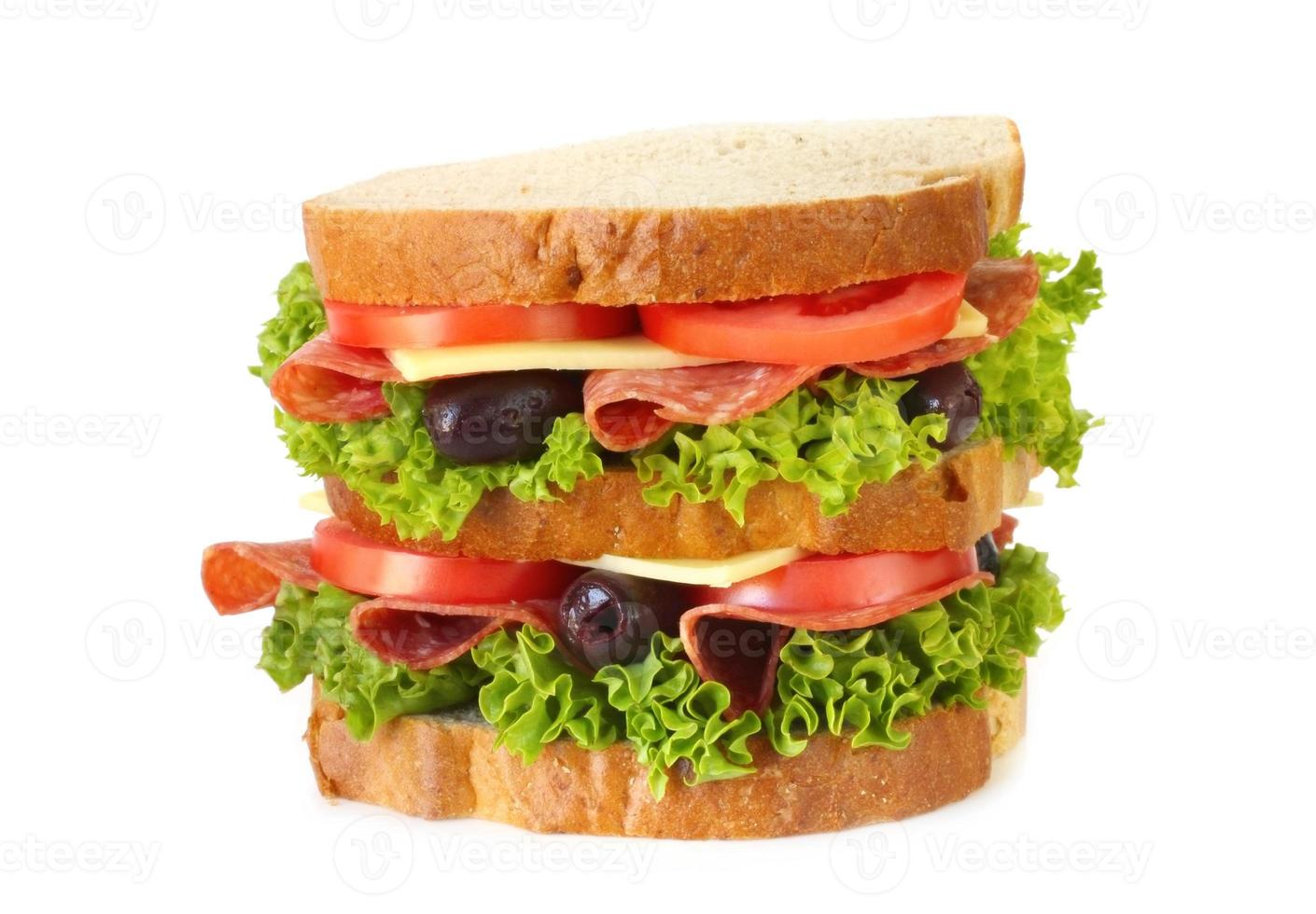 Salami Sandwich photo