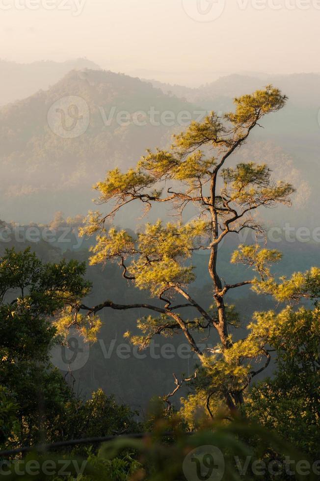 Mountains landscape photo