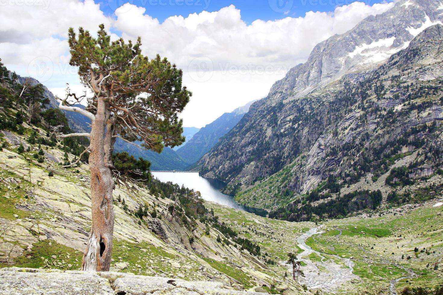 Picturesque nature landscape. photo