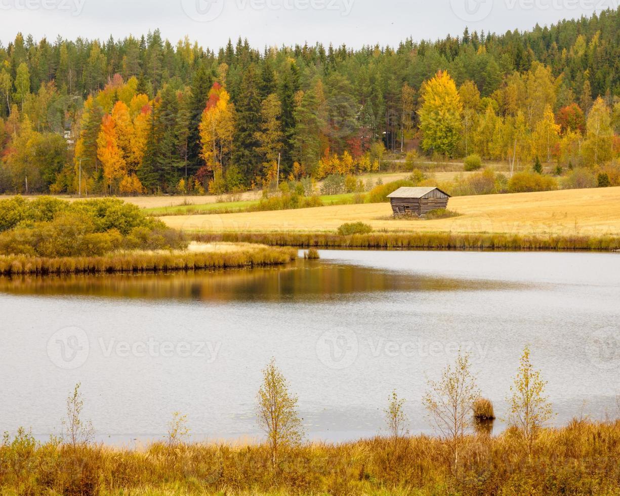 hermoso paisaje de otoño foto