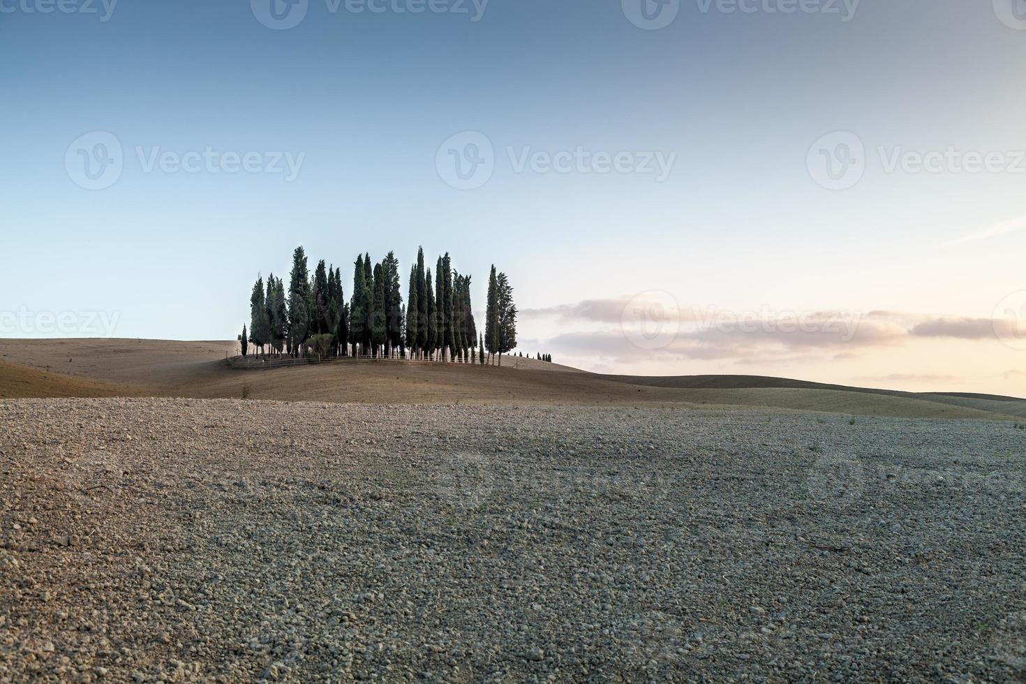 paisaje toscano foto