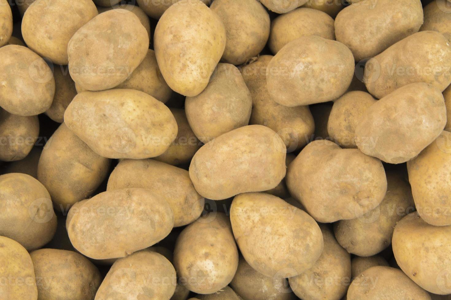 winter potatoes photo