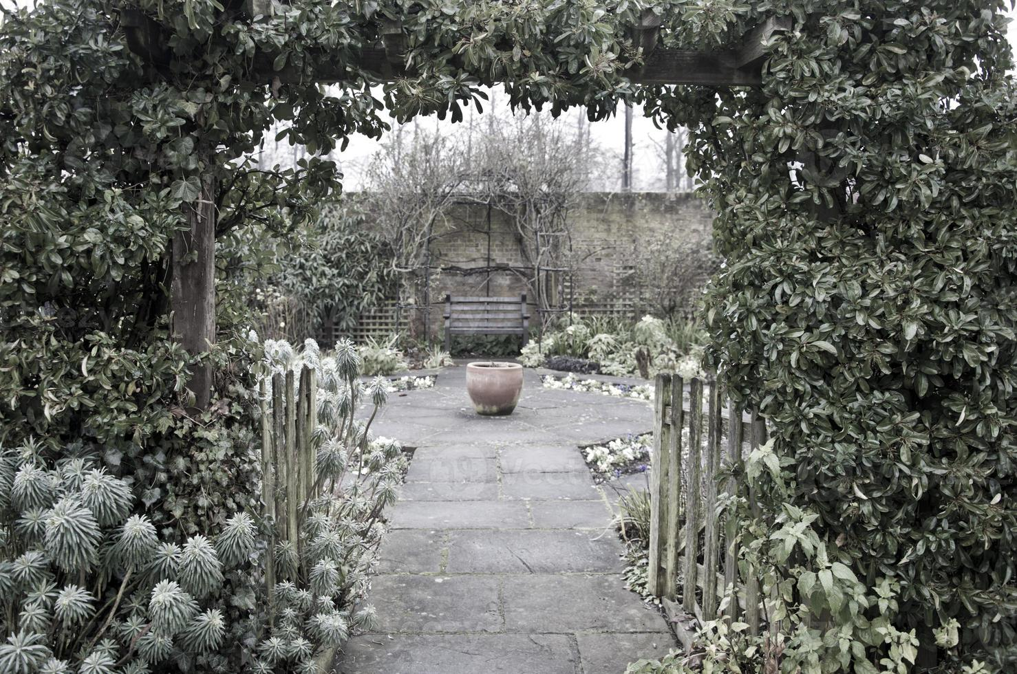 Country garden in Winter photo
