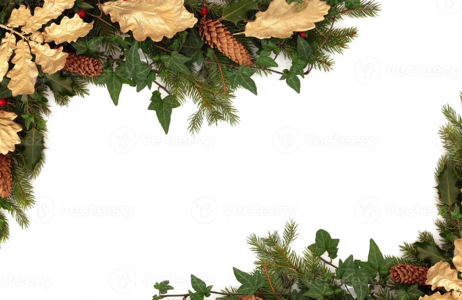 flora y fauna de invierno foto