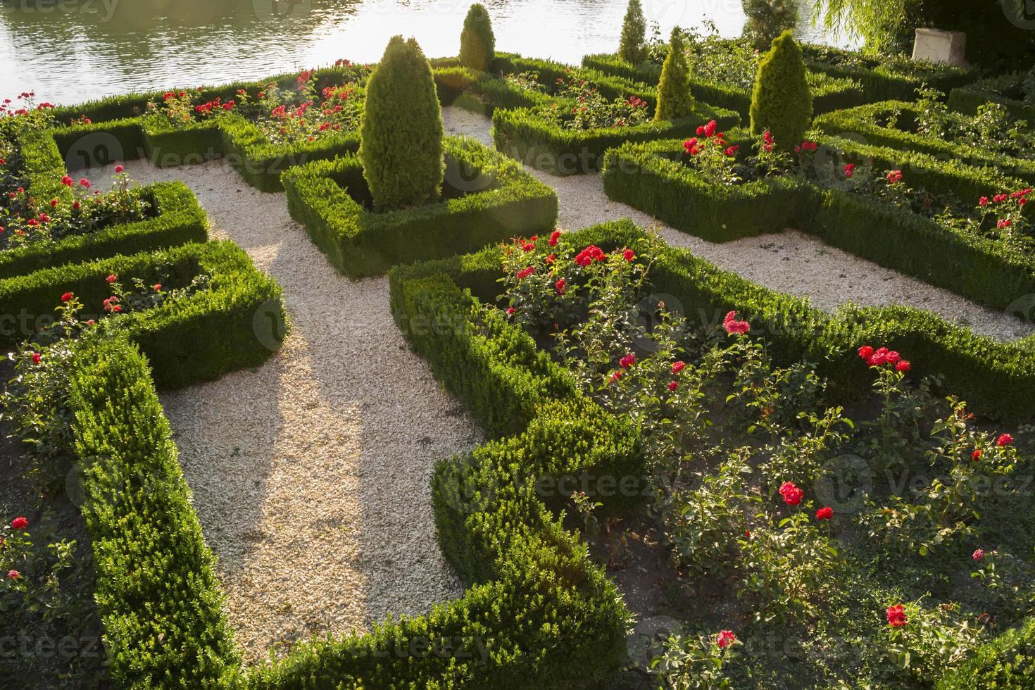 Lake garden photo
