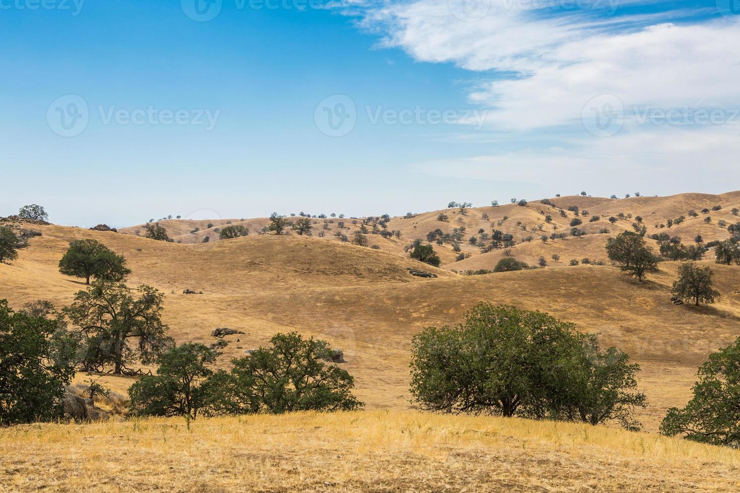 colinas en panorama de país leñoso foto