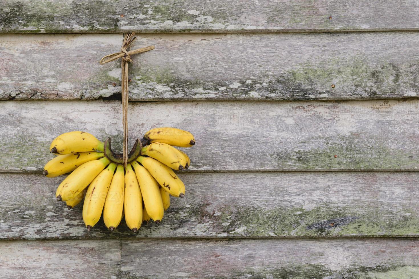 Plátano colgado en la pared de madera vieja. foto