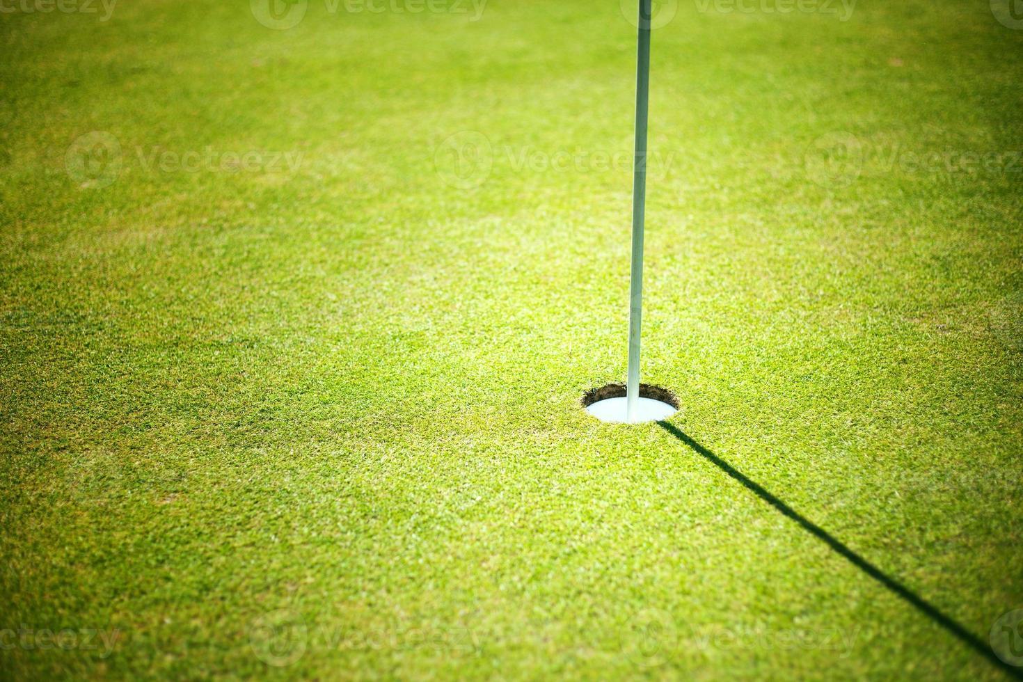 Copa de golf sobre fondo verde con copyspace foto