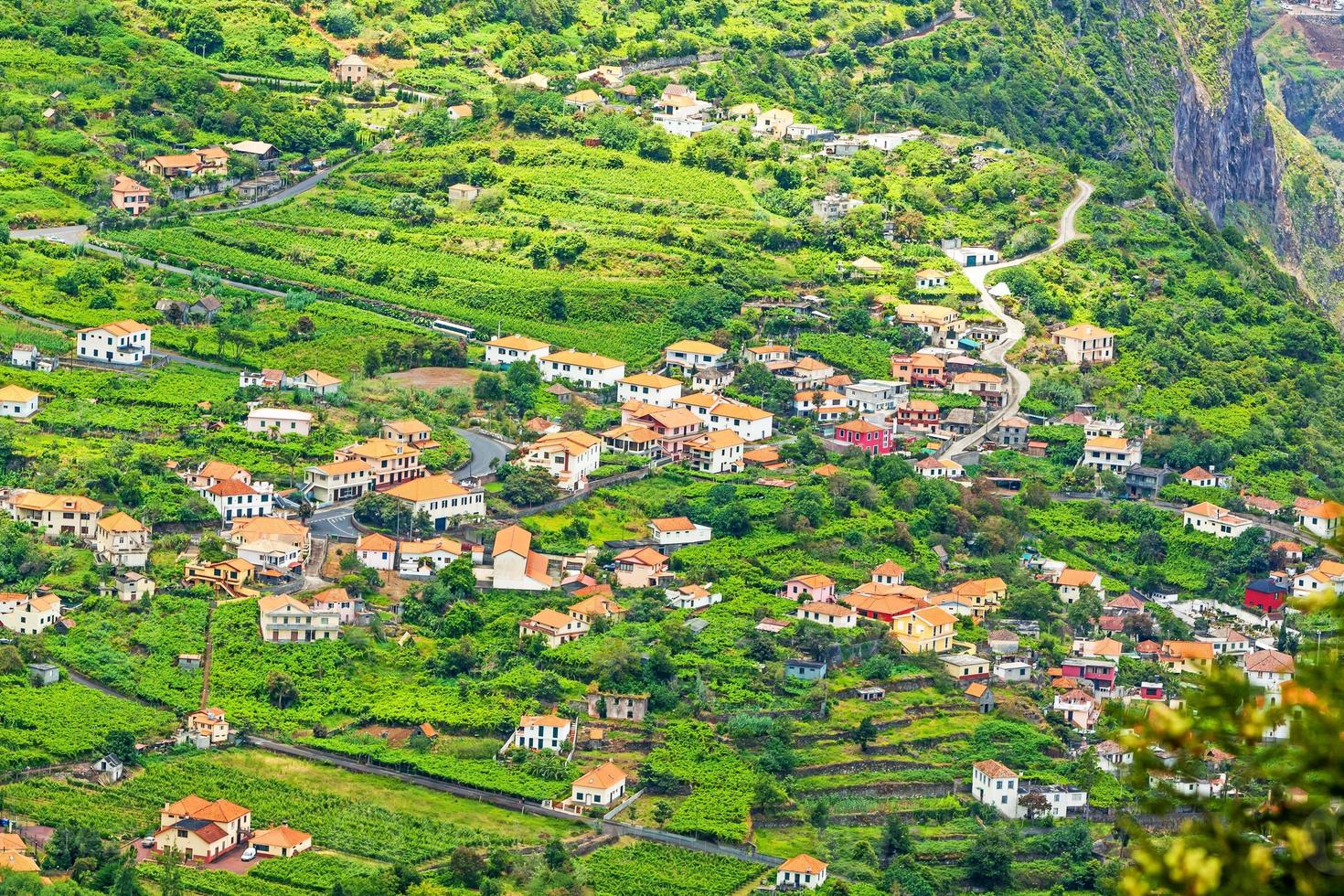 Madeira - typical landscape, green terraced hills photo