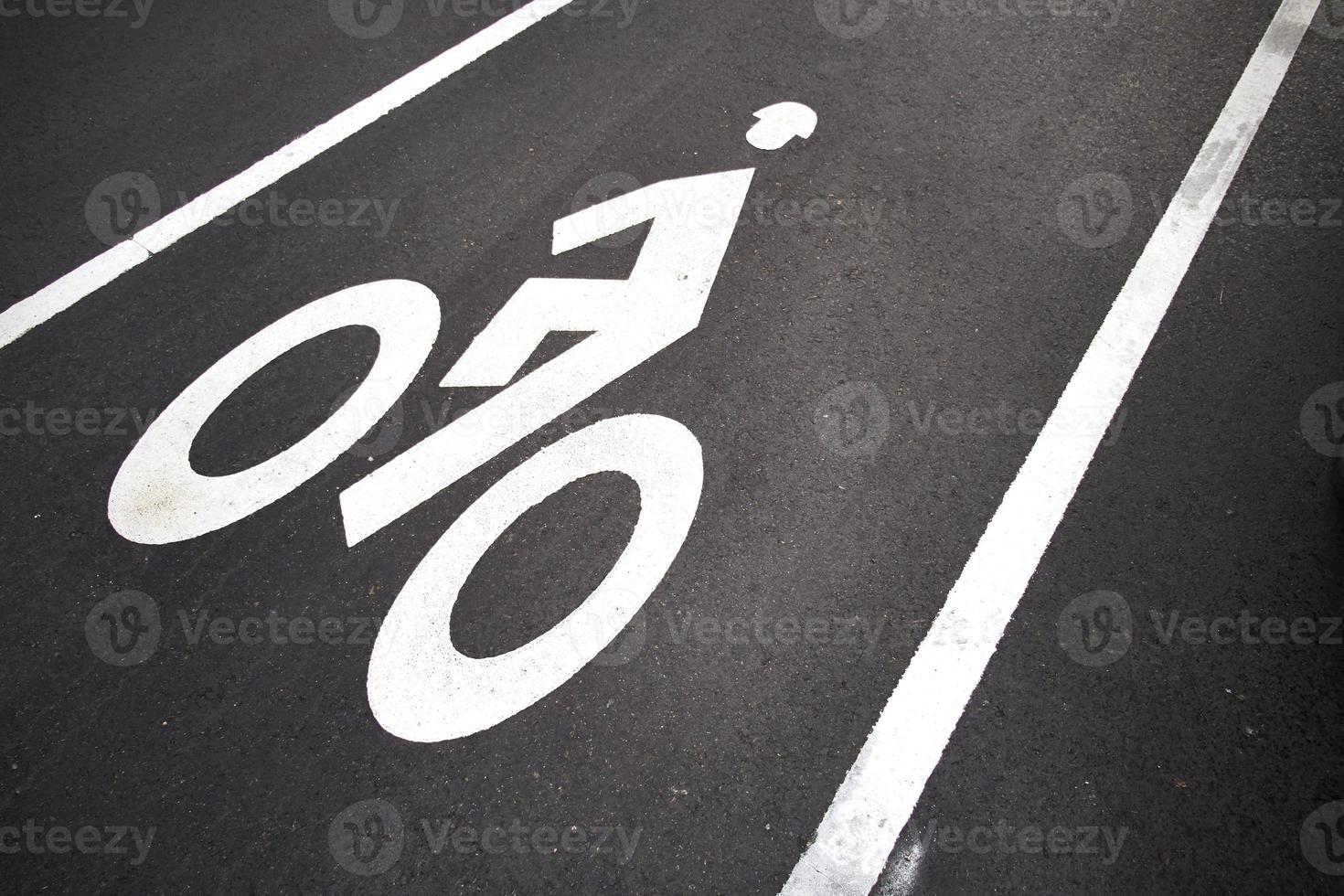 Bicycle Lane harvard cambridge photo