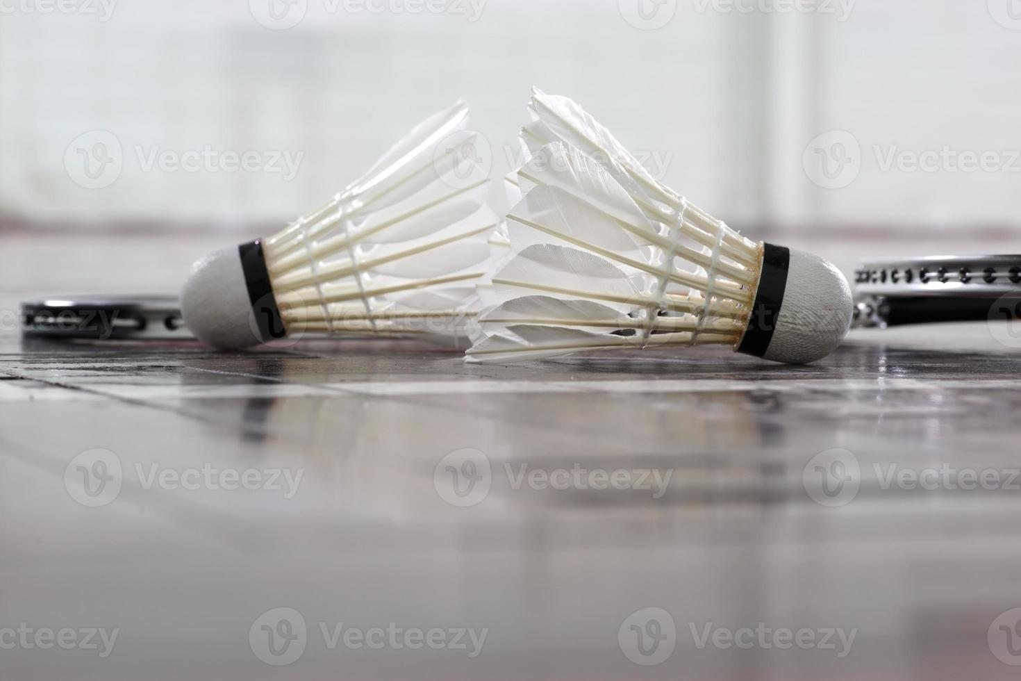 Shuttlecock and  badminton racket photo