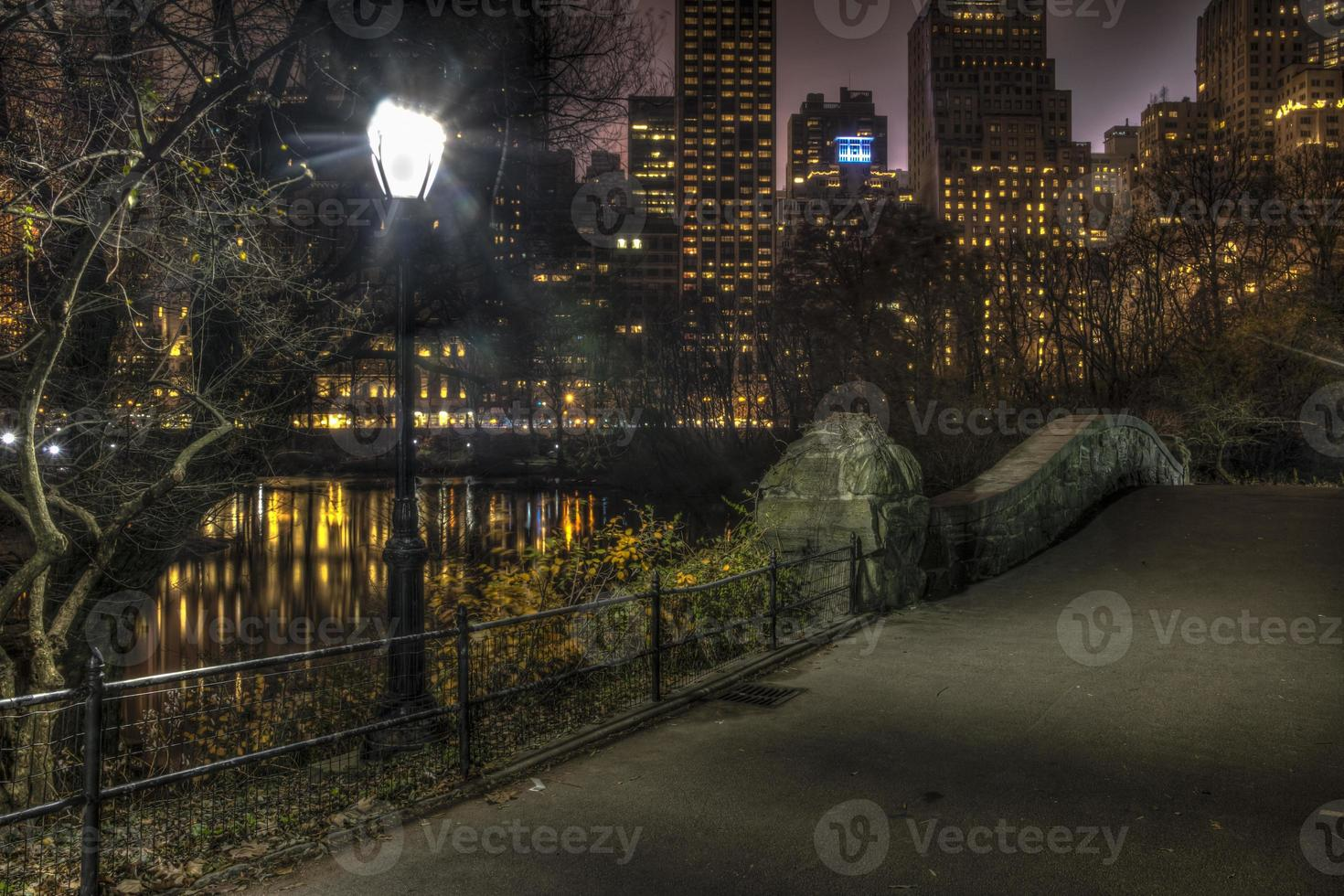 Gapstow Bridge at night photo