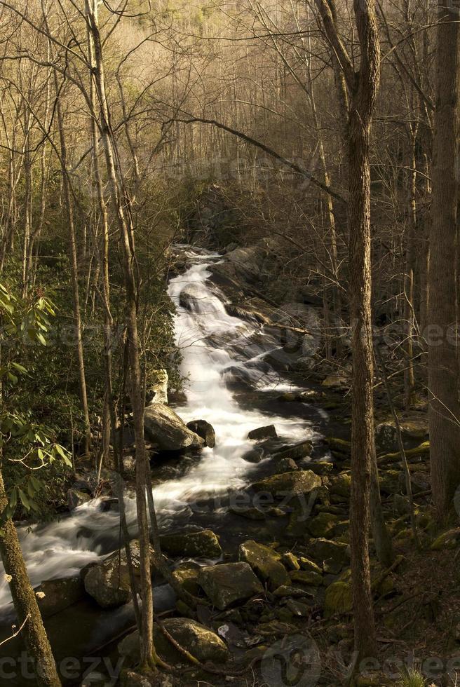 cascatas do pino do acampamento de Lynn foto