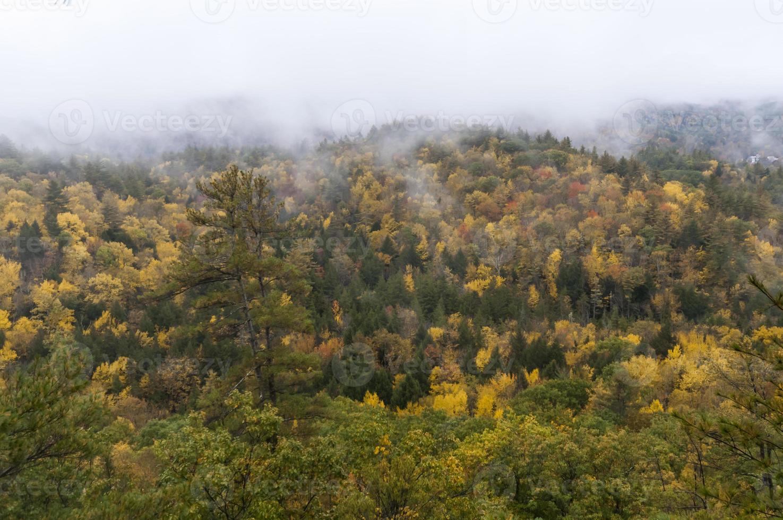 otoño monólogo foto
