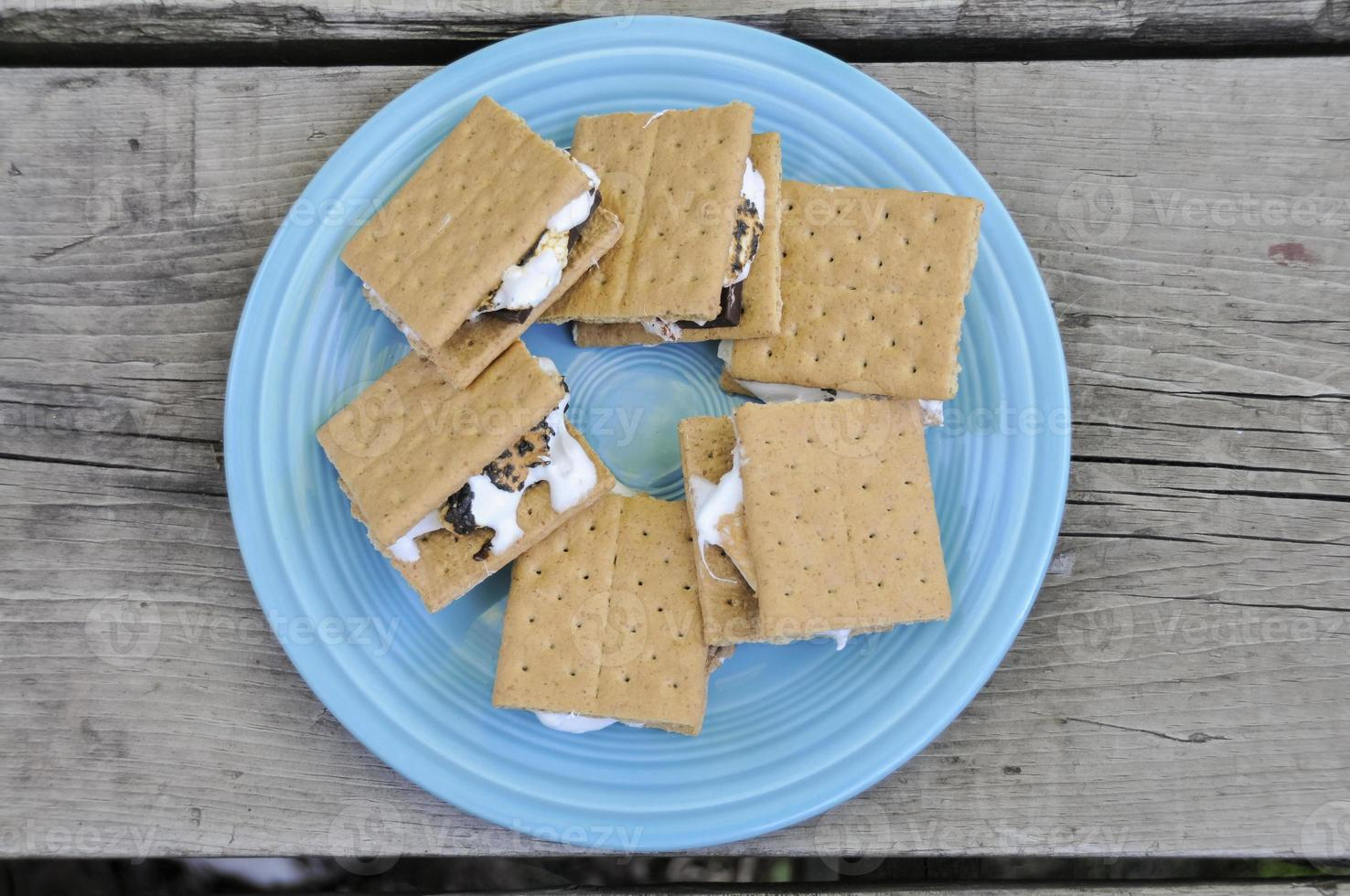 S'mores on a blue plate photo