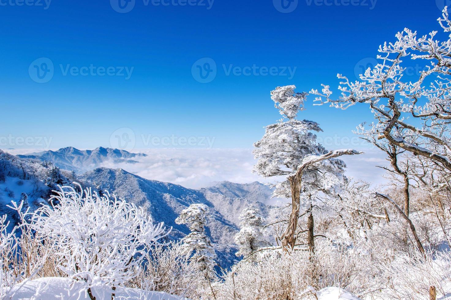 Seoraksan-gebergte is bedekt met ochtendmist in de winter, Korea. foto
