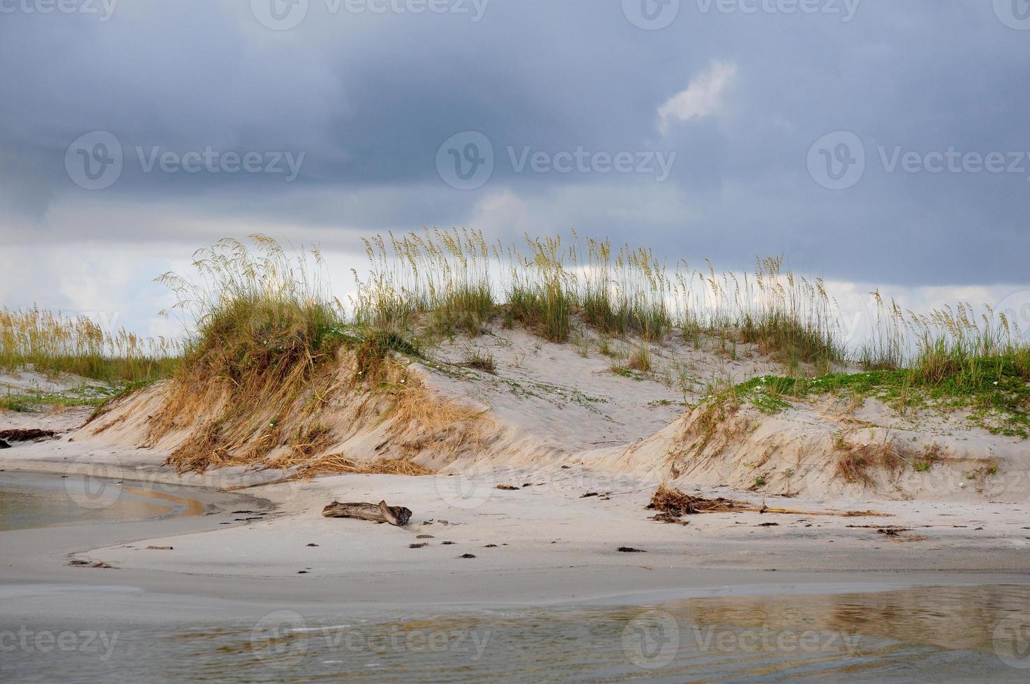 Sand Dunes on the Gulf photo
