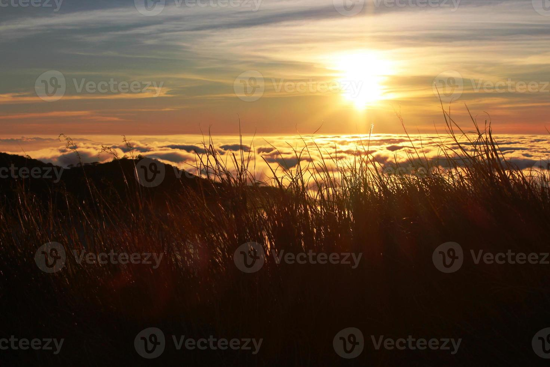 puesta de sol dorada foto