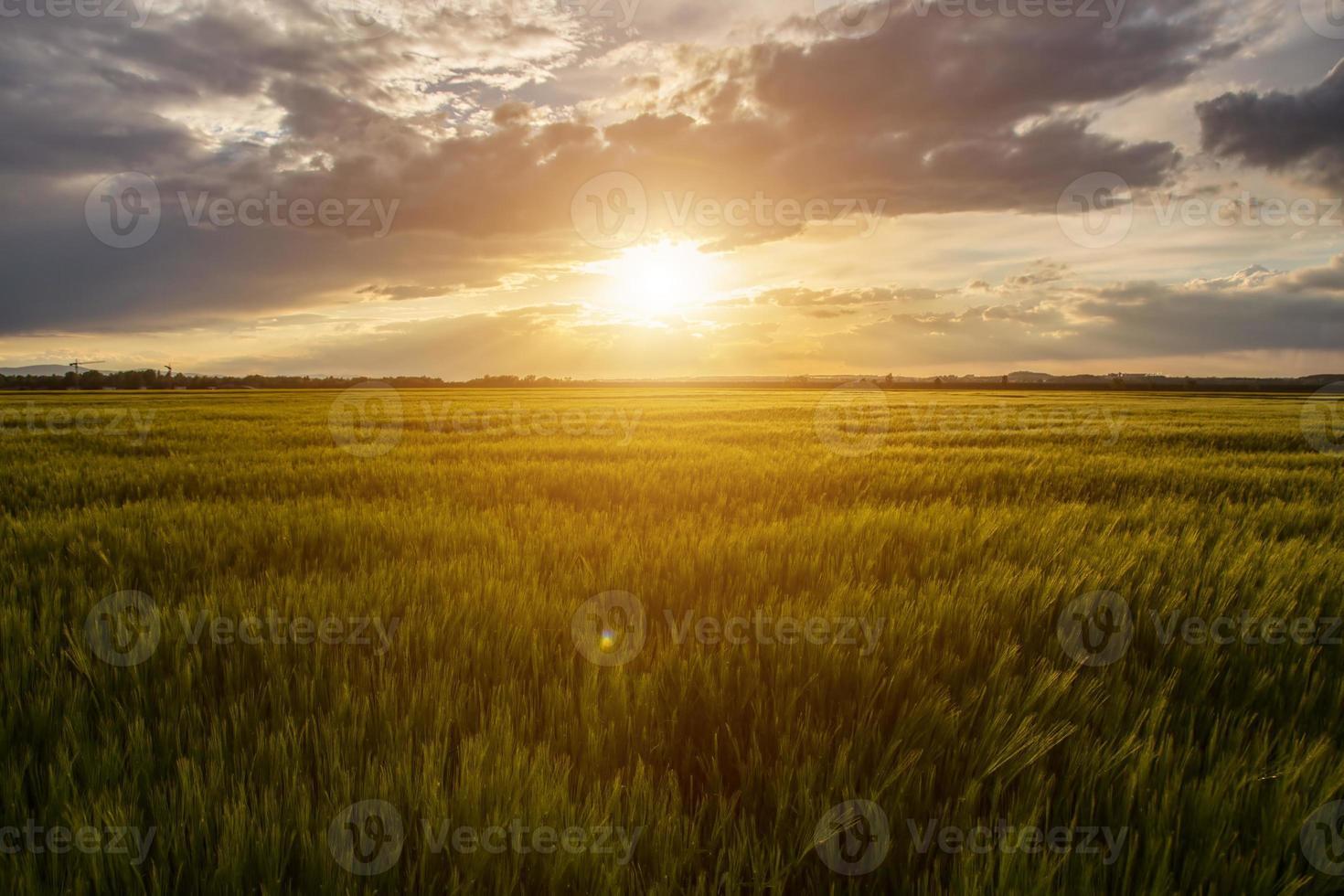 puesta de sol de campo foto
