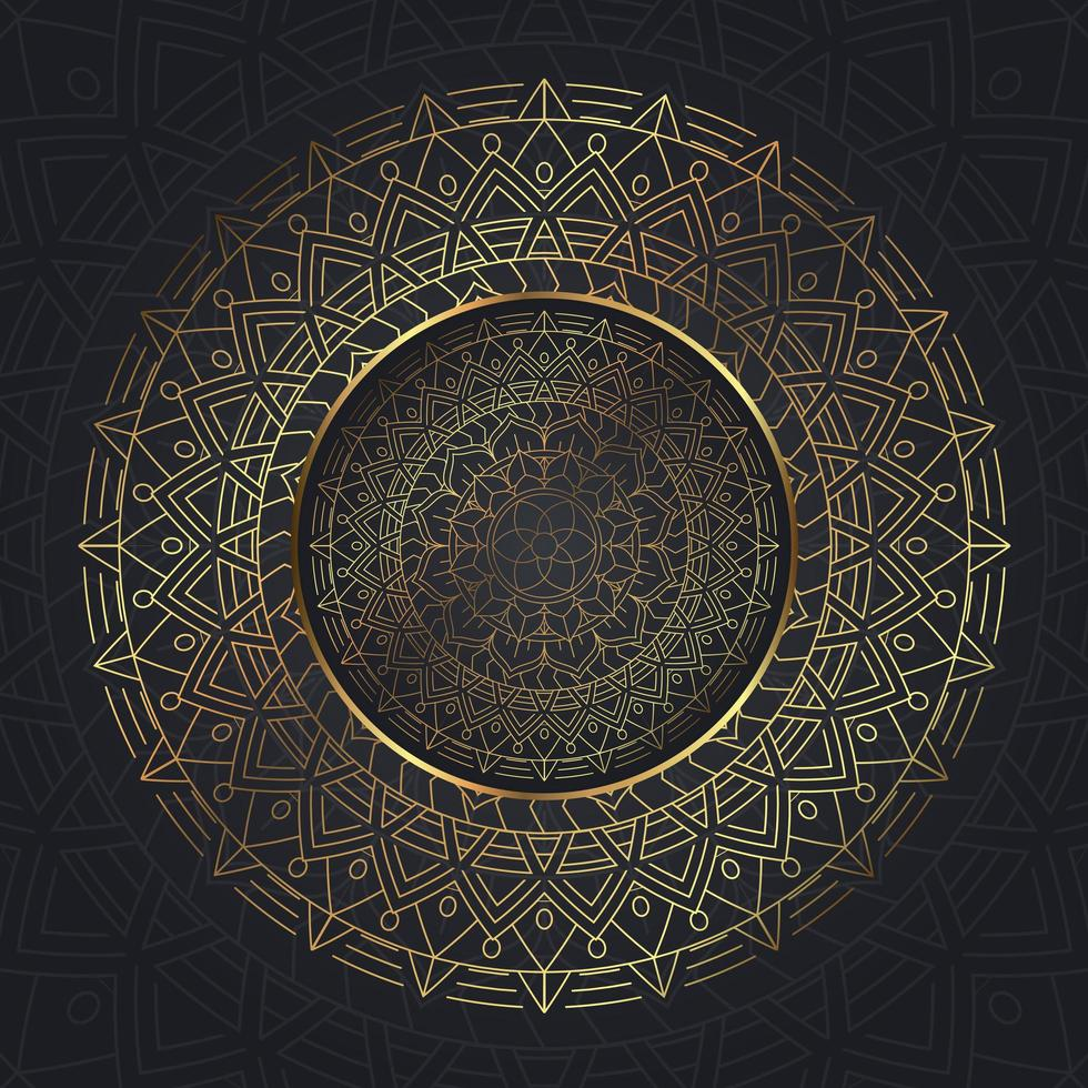 Decorative Mandala Background vector