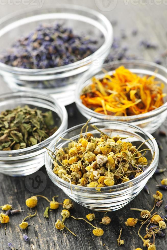 hierbas medicinales secas foto