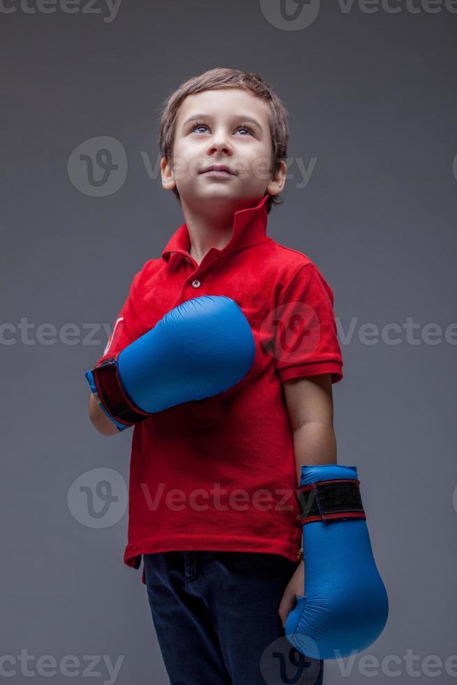 Image of cute young boxer posing in studio photo