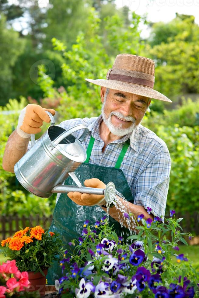 Smiling senior man pouring water in outdoor garden photo