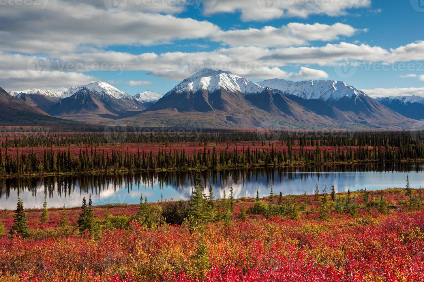 Nature Colors photo
