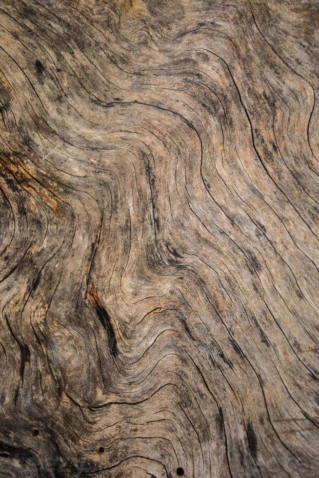 Fondo de madera grunge foto