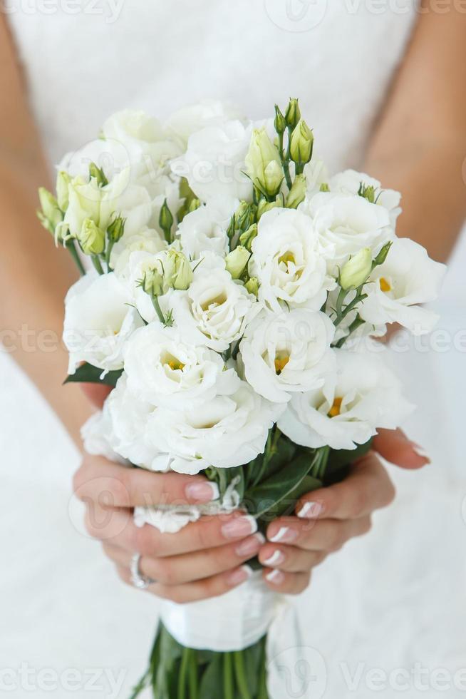 Wedding. Beautiful bride photo